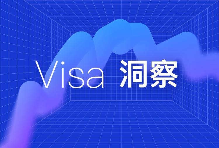 VISA洞察2021